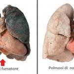 Arriva sul mercato il farmaco miracoloso per ripulire i polmoni dei fumatori.
